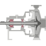 Centrifugal pump with different rolling bearings