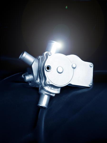 Themis valve